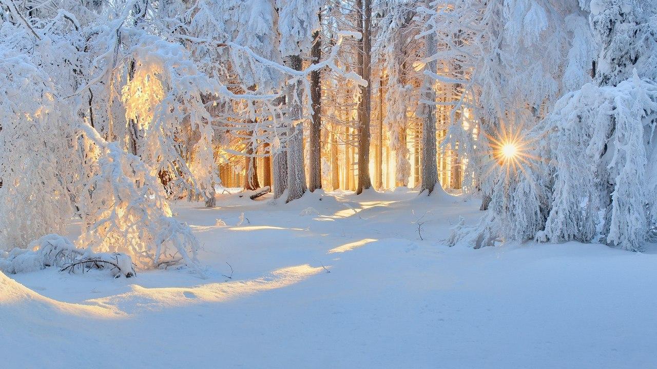 Стихи Александра Сергеевича Пушкина — Зимнее утро